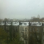 Hurricane Sandy from my kitchen window