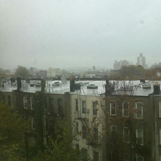Hurricane Sandy from my kitchen window